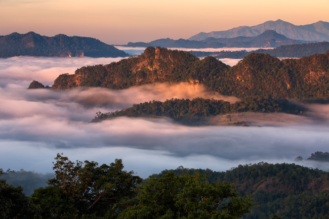 Best places to view the sea of mist in Thailand: A great reward for the conquerors of Doi Hua Mhod in Tak