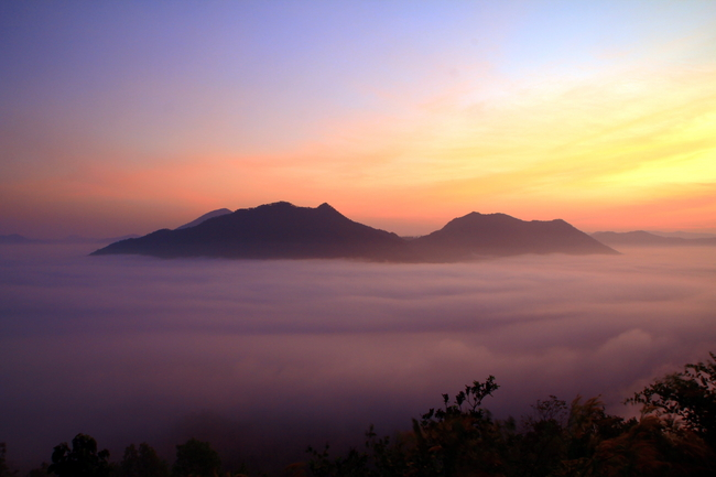 Best places to view the sea of mist in Thailand: Misty morning on Phu Thok in Loei