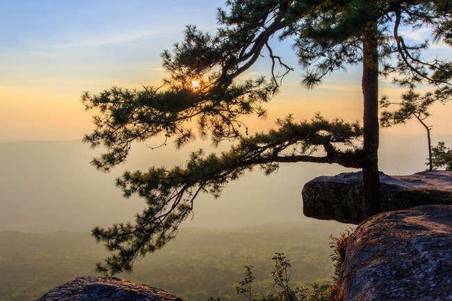 Best places to view the sea of mist in Thailand: The cliff is one of the best photo spot on Phu Kradueng in Loei