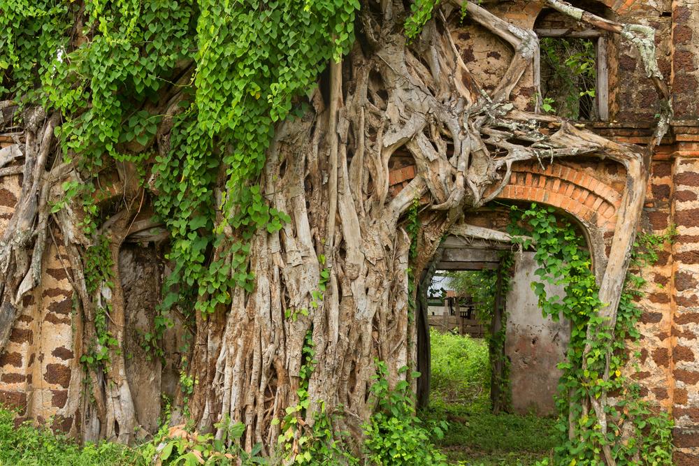 Things to do in Sakon Nakhon, Thailand: Old-world charms at Tha Rae