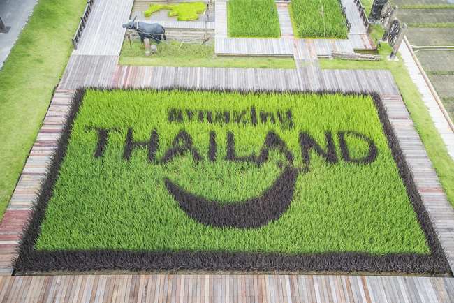 Things to do in Suphan Buri, Thailand: And local ways of life are what makes Thailand amazing!