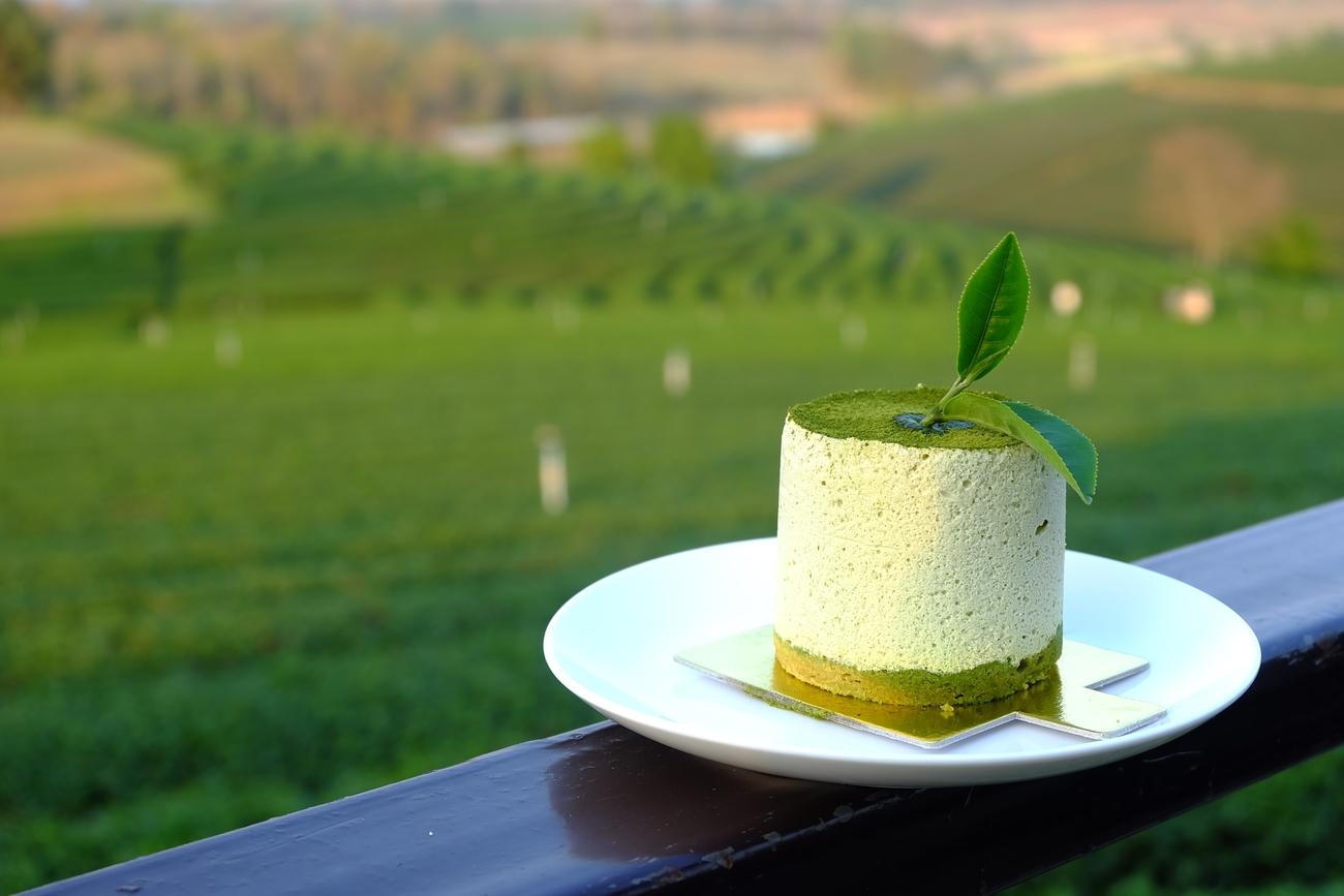 Top tea plantations in Thailand: TEAramisu with a view at Choui Fong Tea Plantation, Chiang Rai