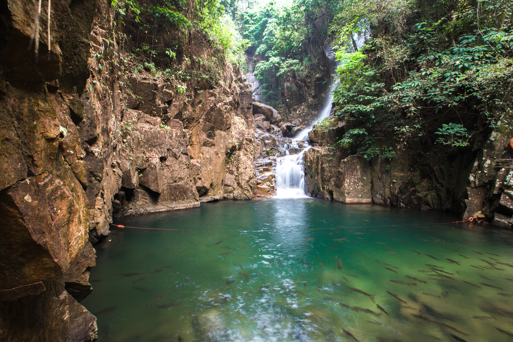Things to do in Chanthaburi, Thailand: Get refreshed with the fish at Phliu Waterfall