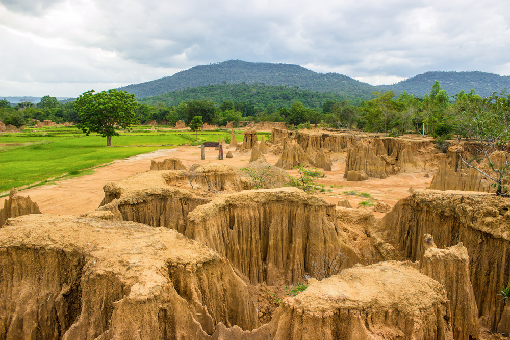 Things to do in Sa Kaeo, Thailand: Red and brown meet green at Lalu